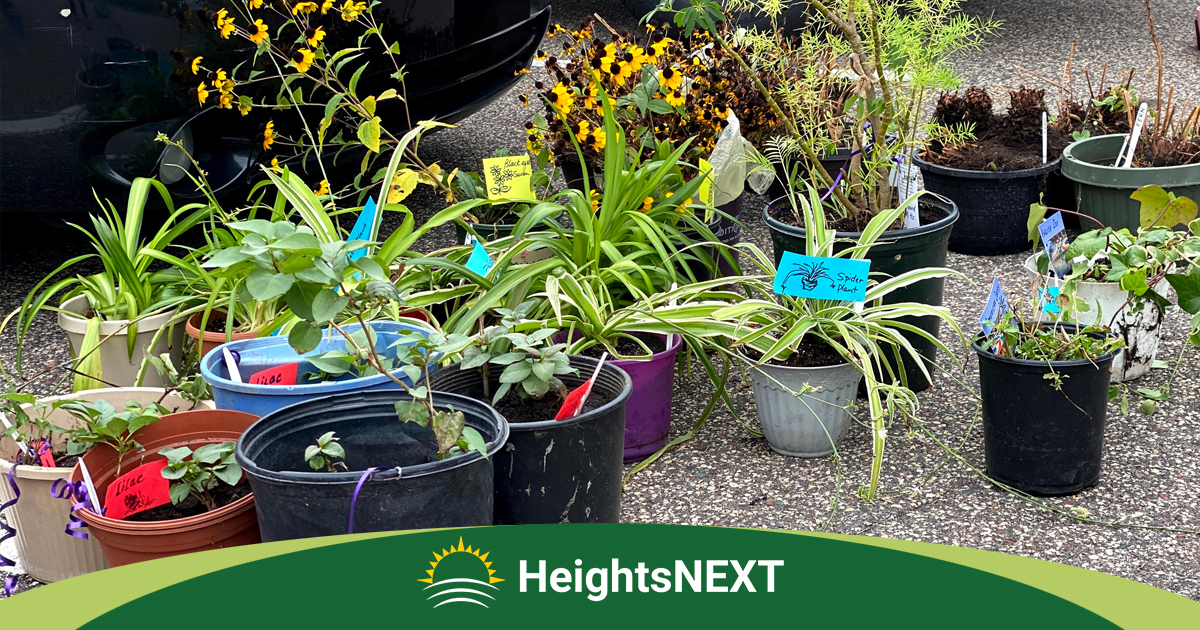 HeightsNEXT Plant Exchange - Columbia Heights, MN