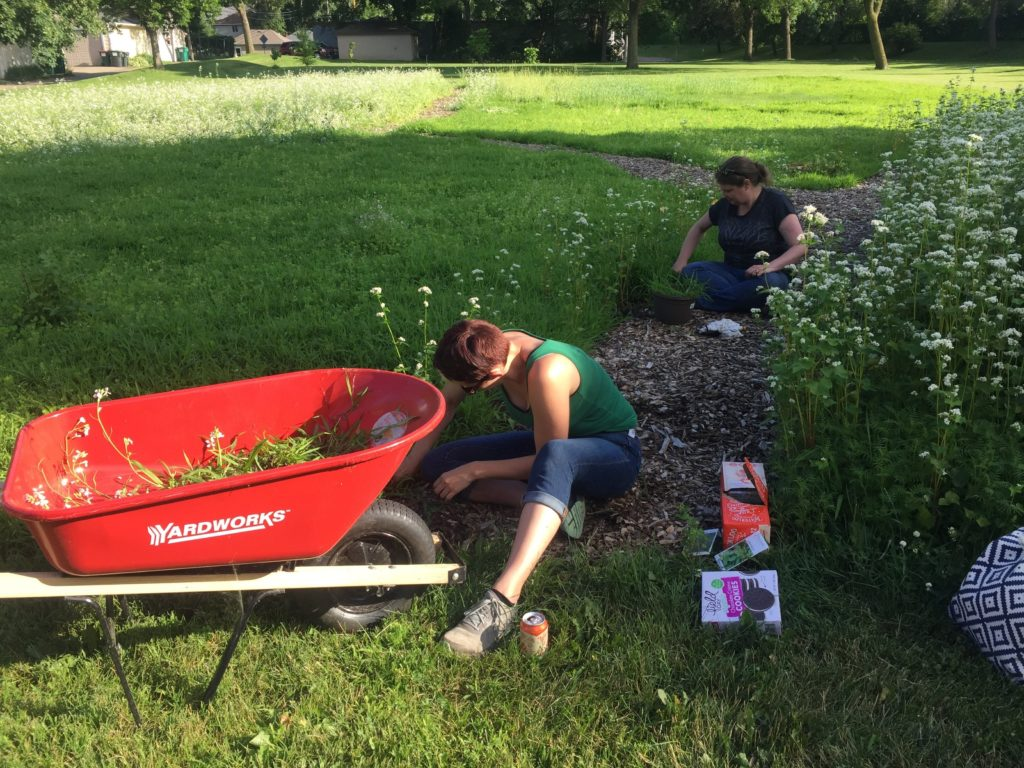 Gardeners weed the food forest